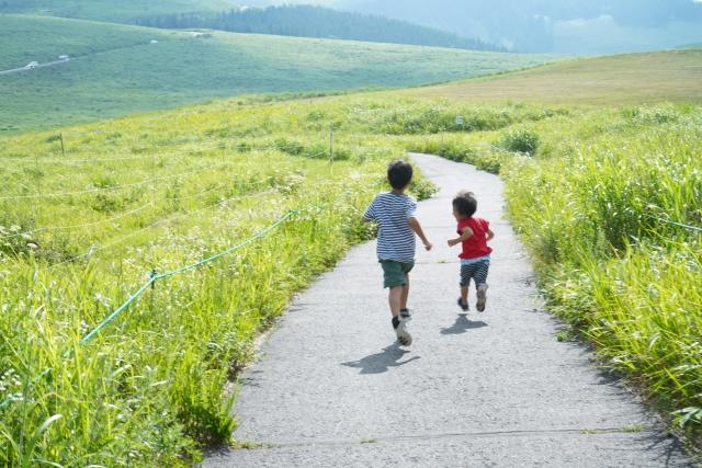 田舎 子供 道
