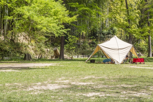 新緑の中のテント