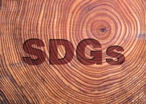SDGs 木